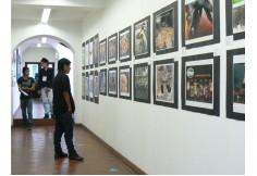 Unicomfacauca - Exposiciones