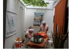 Prácticas realizadas por los estudiantes de efecto shock para las pieles maduras