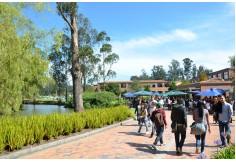 Universidad de La Sabana - Pregrado Cundinamarca Foto