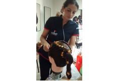 Centro Escuela Técnica de Estética Integral Belle Med Popayán Colombia